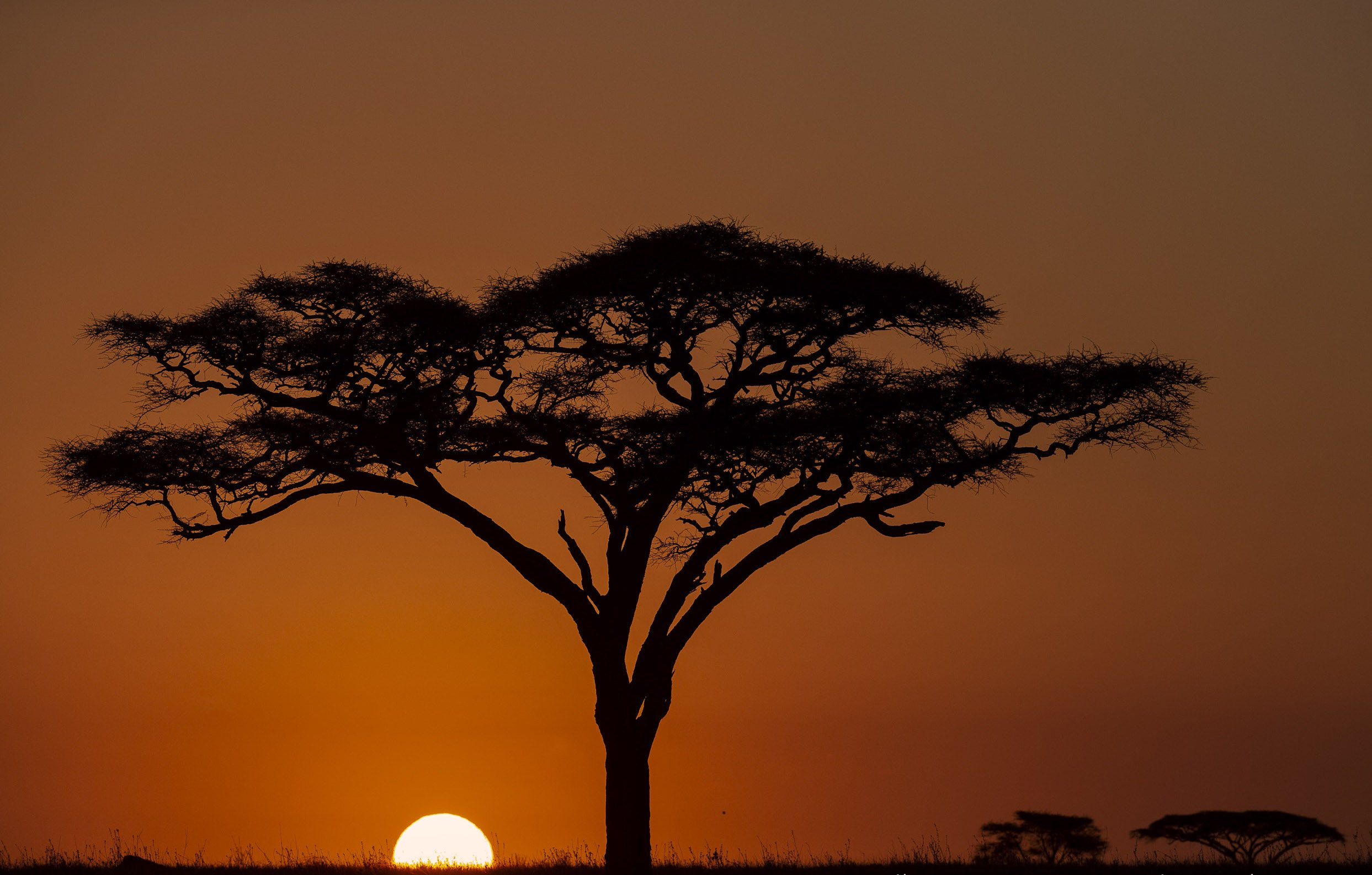 SUNRISE -Serengeti - Eastern hills